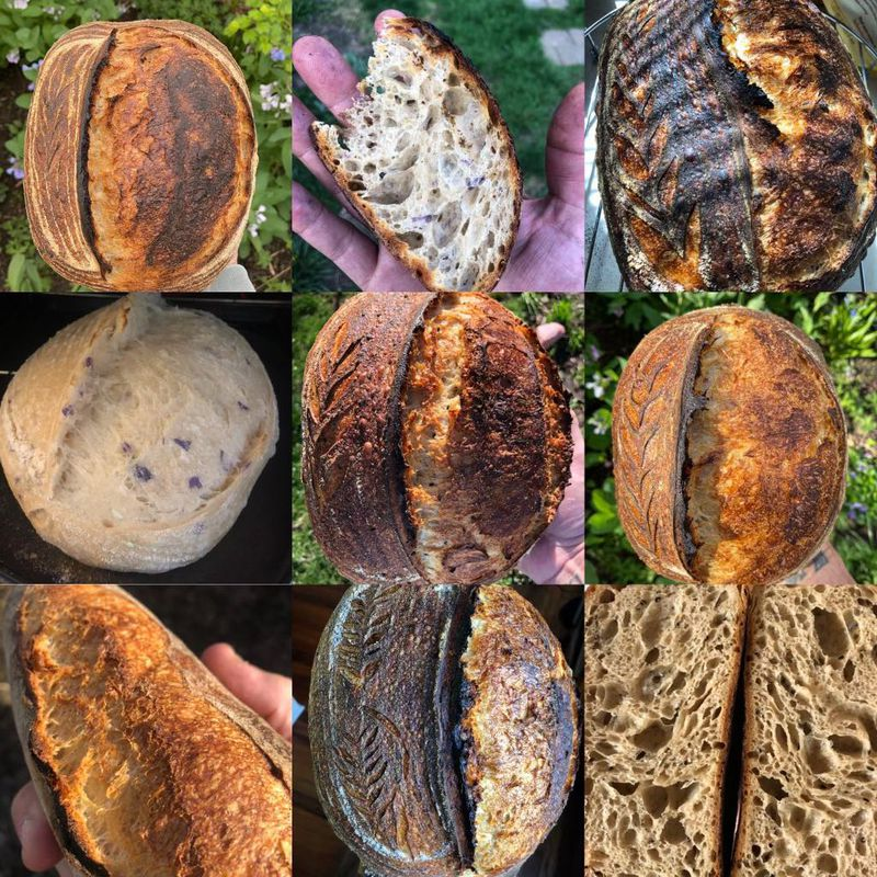 Good Hands Bread Co., founded and owned by Daytonian Andrew Fisher, will open inside the new South Park Food Hall at 735 Wayne Ave.