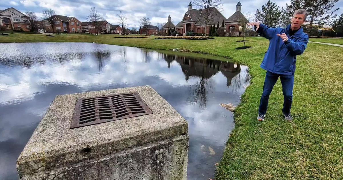How healthy are our local waterways and what's being done to protect them? - Dayton Daily News